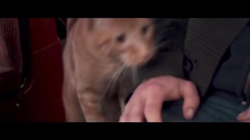 Уличный кот по кличке Боб (2016) - ТРЕЙЛЕР НА РУССКОМ (720p).mp4