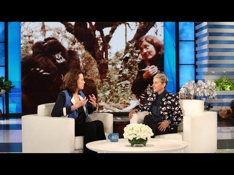 Sigourney Weaver Teaches Ellen How to Interact with Gorillas
