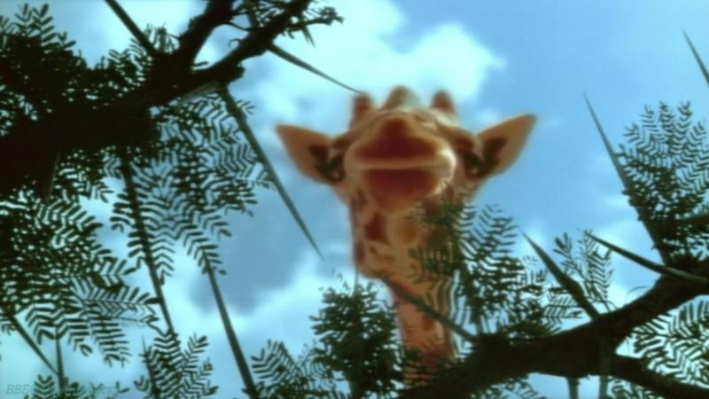BBC «Жизнь млекопитающих (03). Травоядные» (Познавательный, природа, 2002)
