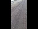 бункер 4 видео