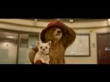 29 ноября в 20:15 смотрите фильм «Приключения Паддингтона» на канале «Киносемья»