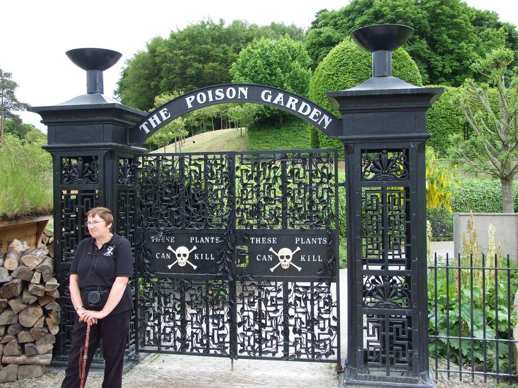 ядовитый сад Алника, Великобритания