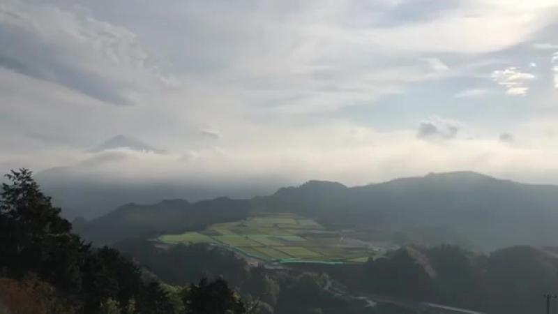 Небо над чайной плантацией