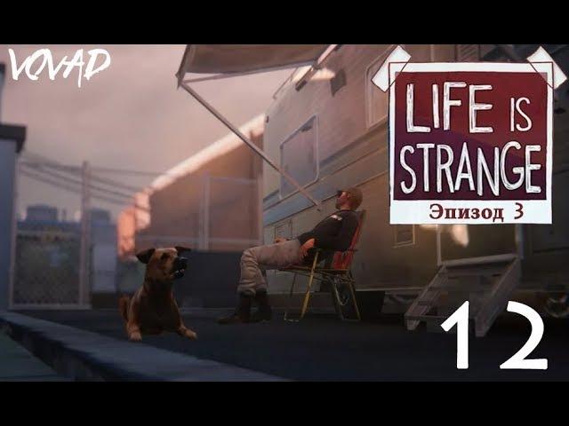 Прохождение Life Is Strange (Эпизод 3: Теория хаоса ) Часть 12