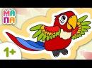 ЗВЕРЯТА 🔸🔷🔸 Самая яркая и цветная птица, которая говорит как человек😋