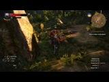 s0rry играем в The Witcher 3: Wild Hunt со всеми дополнениями (part 2)