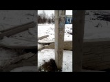 Ужас. 11.02.18. 13: 00 .  Адвокат врезался в забор лицея 47 в Харькове.