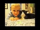 20 ЛЕТНИЙ кот даже не думал что сможет быть нужным кому то на старости лет