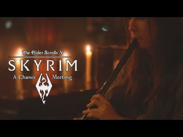 TES V Skyrim A Chance Meeting Cover by Dryante Jeremy Soule