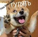 Юлия Самойлова фото #43