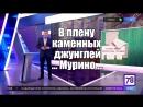 В плену каменных джунглей Неделя в Петербурге Канал 78 О проблемах Кудрово и Мурино