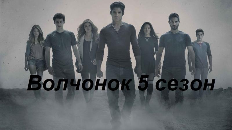 волчонок 5 сезон 1 2 3 4 5 6 7 8 9 10 11 серии