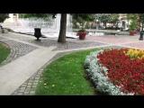 Staré mesto, Košice, Slovakia