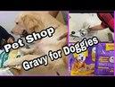 Dog Vlog at Pet Shop and Kennel Kitchen Lamb chunks Doggies Gravy