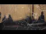 САМАДХИ. Майя - иллюзия обособленного я. Часть 1 (2017 г.)
