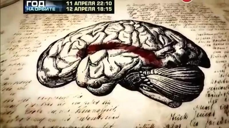Как Нейропластичность Мозга лечит ОКР