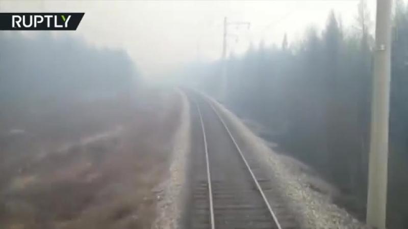 Поезд, проехавший через лесной пожар в Комсомольске-на-Амуре, попал на видео
