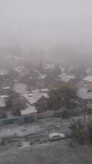З першим снігом