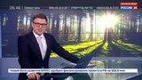 Новости на Россия 24 Польшу оштрафовали за вырубку Беловежской пущи