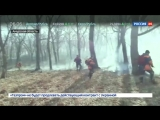 Благовещенск в огне - на борьбу с пожарами Приамурья брошены все силы