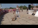 День защиты детей отметили в Севастополе