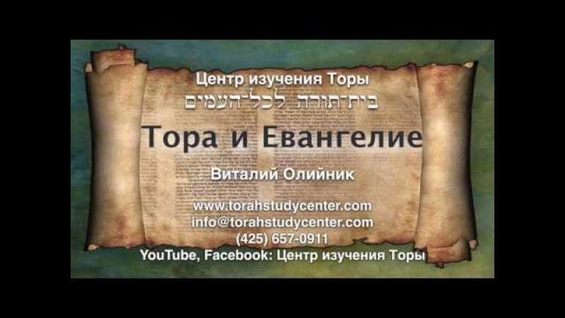 25. Недельная глава Торы Цав (Лев. 6:1 - 8:36)