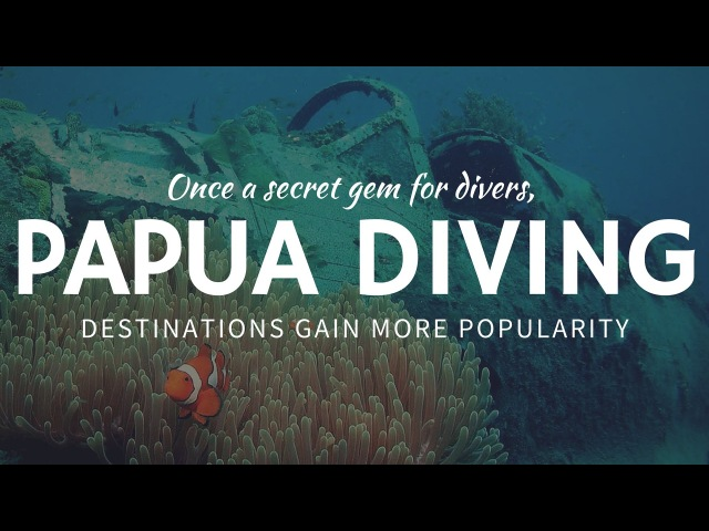 Popular Diving and Snorkeling Destination - Papua New Guinea