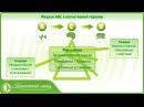 Модель АВС в когнитивной терапии Методы лечения фобий
