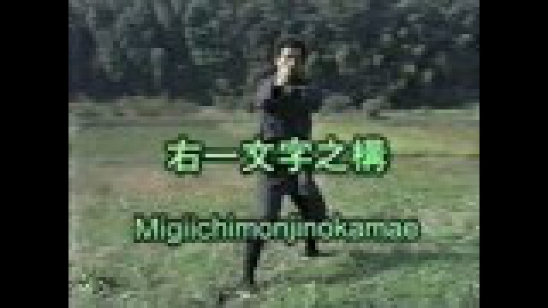 Bujinkan Gyokko Ryu Massaki Hatsumi