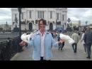 Почему застой во всех сферах моей жизни Елена Ушанкова Коуч Астролог Нумеролог