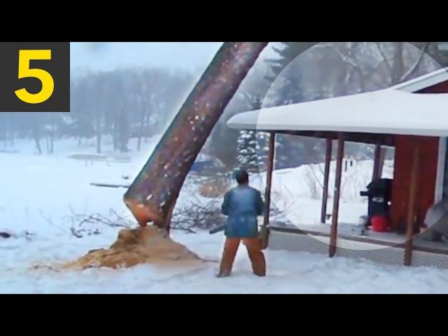 Top 5 Cutting Down Tree FAILS