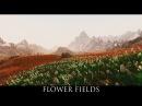 TES V Skyrim Mods Flower Fields