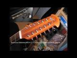 Applause Balladeer 2412 12 string. В акустике и подключении. Unplugged and plugged (OP4 + LR Baggs)