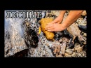 Дикая кухня - РЫБА В ГЛИНЕ   Steamed Fish In Clay lbrfz re[yz - hs,f d ukbyt   steamed fish in clay