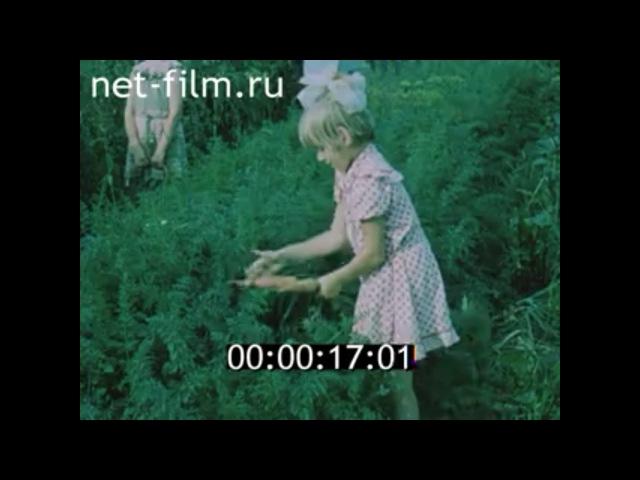 ФИЛЬМ РОДОСЛОВНАЯ РУССКОЙ КУХНИ.. (1987)