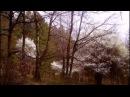 Вивалди Пролет