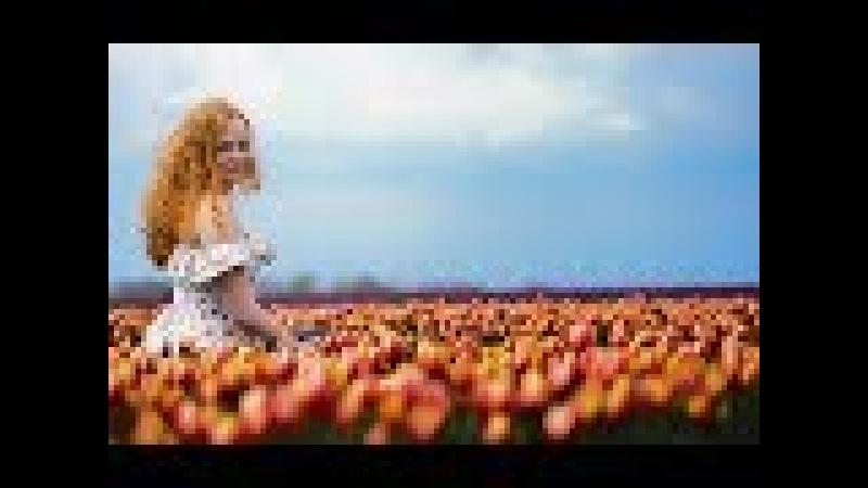 Не дури дівчину - Коля Бучак (lyric відео)