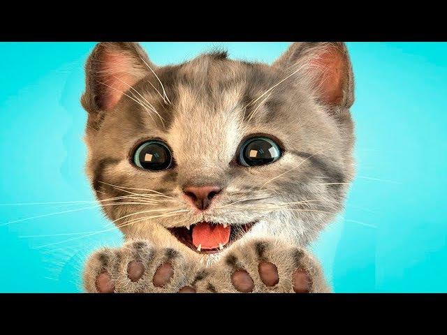 Мой Маленький Котенок Любимый Питомец Симулятор Котика Игровой Мультик для Детей