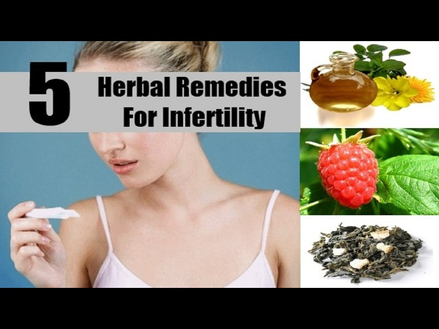 5 Home Remedies for Female Infertility Sterility