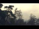 Simeon Walker / Drift (Piano Day 2017)