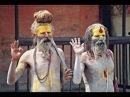 Особенности рук йогов Индии. Хиромантия
