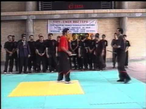 Dai Sifu Emin Boztepe using Bart Cham Dao