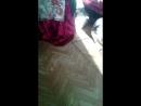 кошка играет с резинкои