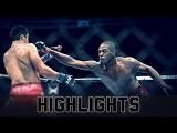 Jon Jones vs. Lyoto Machida ● Fight Highlights ● HD