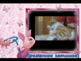 Видео-открытка MOV01135