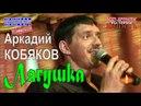 Аркадий КОБЯКОВ - Лягушка Концерт в Санкт-Петербурге 31.05.2013
