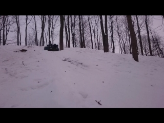 Пушкин гора Парнас