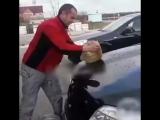 Помыл машину котом