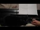Черный кот на белых клавишах