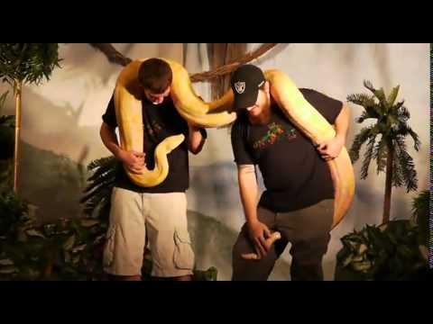 Фото со змеёй новые лучшие приколы, самые смешное видео 2015